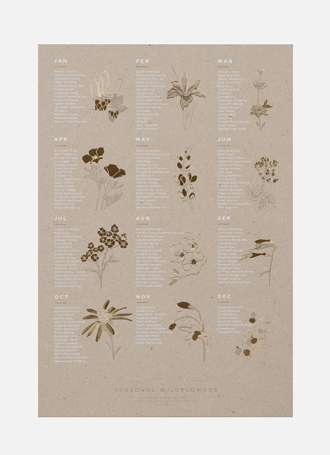 Young America Creative - California Native Wildflowers - Gold Foil - Carboard Print