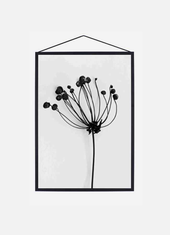Moebe Frame – Black Aluminium – large