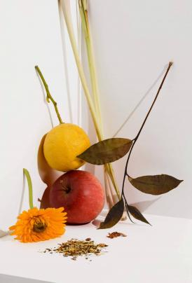 Cocoon Tea Artisans – Organic – White Tea