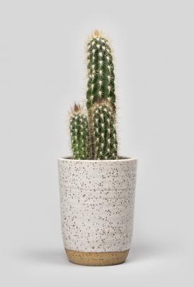 volta_norden_goods_-ceramic_candle_12oz_ojai2