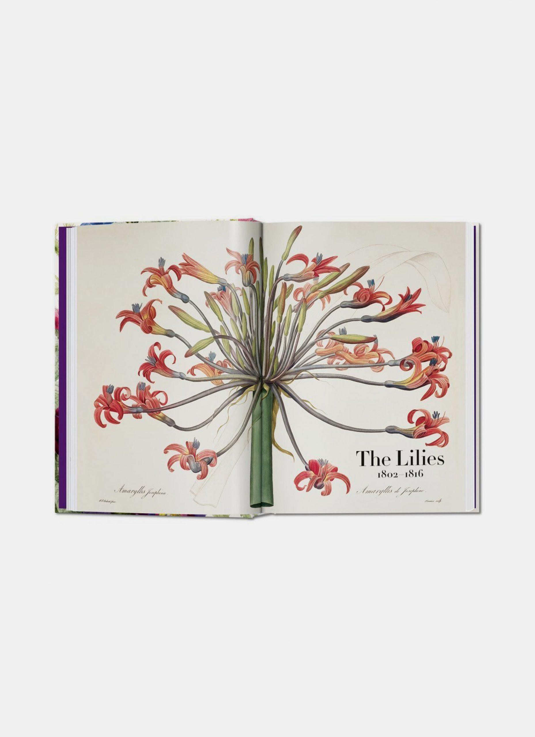 Taschen - Pierre-Joseph Redouté - The Book of Flowers - 40th Anniversary Edition